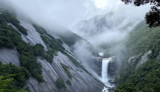 【体験談】屋久島に旅行する際のおすすめ【縄文杉・白谷雲水峡以外】